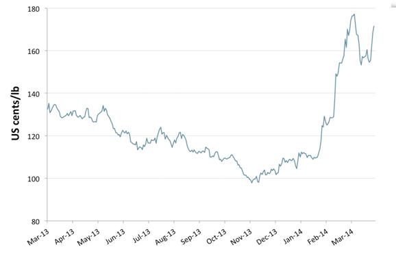 grafico prezzi del caffè